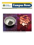 Campus News February 19, 2010